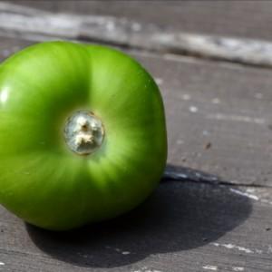 Le tomatillo sans son enveloppe