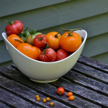 tomates du potager dans un bol blanc